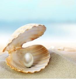 珍珠贝母表盘设计的腕表:贝壳是如何制成表盘的?